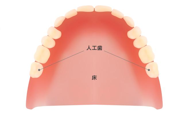 入れ歯の仕組み
